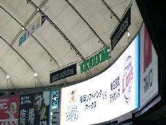 鷹の祭典in<br />  東京ドーム